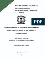 AMILOGLUCOSIDASA BIOTECNOLOGIA.pdf