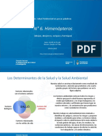 -6_himenopteros.pdf