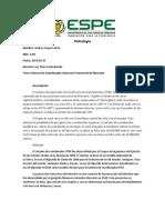 Hidrologia UTM Andres Araujo 2244.docx