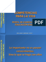definicioncompetenciasbasicas-1216768675850614-9[1].ppt