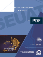 Garantias Individuales y Sociales