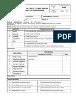 I-006 Perfil de Cargo y Competencias Dir. Ingenieria_doc