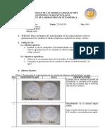 Efecto_alelopatico_hidrodestilado.docx