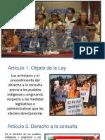 Presentación1 LEGISLACION consulta....pptx