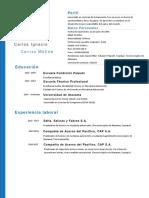 CV CARLOS CARRIZO (4).docx