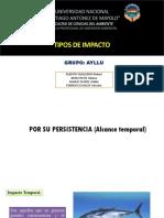 Tipos-de-Impacto-AYLLU.pptx
