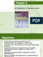 mdfund_unit7Chapter05ResolutionandDetectionofNucleicAcids.ppt