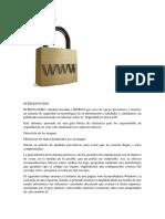 Seguridad en sitios web.docx