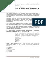 AULA 01 - PRINCÍPIOS BÁSICOS DA ADMINISTRAÇÃO PÚBLICA -MPU-1.pdf