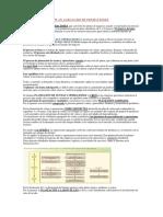 Plan Agregado de Operaciones Docx