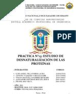 Práctica N° 13 Estudio desnaturalización de proteina