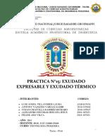 Práctica N° 15 Exudacion