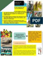 ALTERNATIVAS DE SOLUCION.pptx