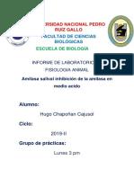 ENZIMA PRACTICA DE FISO ANIMAL.docx
