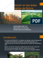 Deforestación en las áreas protegidas de Bolivia.expo.pptx