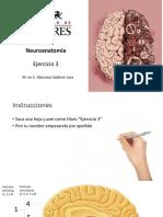 Ejercicio 3.pdf