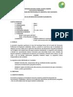 SILABO SIG.pdf