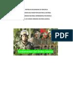 trabajo de defensa orden interno.docx