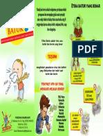 leaflet ppi.pdf