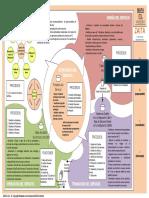 Mapa ITIL v2011 -ZAITA.pdf
