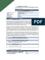 AVICULTURA COSTO DE PRODUCCION.docx