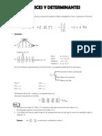 Ejercicios de matrices y determinantes