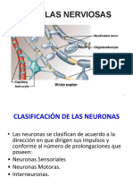 Neuronas.pdf