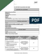 Formato Reporte Del Asesor Externo