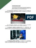 TIPOS-DE-CONTRACCIONES-MUSCULARES.pdf