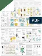 Foldscope_instruction-sheet_V2