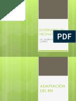 Adaptación de RN (3).pdf