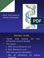 Basic Genetics 1