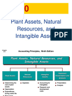 Ch 10 Plant Assets Natural Resources