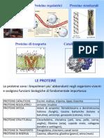 Proteine_LIM.pdf