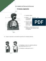 Ficha - Sistema respiratorio CN6