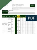 FORM UPYM 003 PLANIFICACION RESULTADOS PERSONAL - copia.xls
