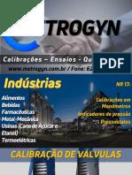 Metrogyn - NR 13.pdf