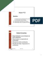 aula12-Elasticidades.pdf