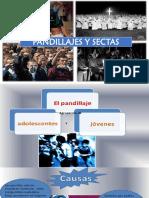 Carmen rosa psicologia.pptx