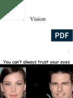 sensation and perception the eye