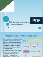 Función de relación.pptx