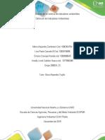 Fase 4 – aplicación de un sistema de indicadores ambientales_358024_12 DEFINICION INDICADORES AMBIENTALES FASE 4.docx