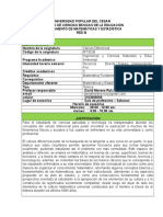 CALCULO DIFERENCIAL nuevo programacio 2019.doc