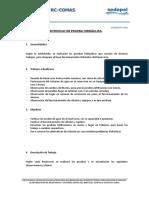 310104211-Protocolo-de-Prueba-Hidraulica-r-2-Collique-1.doc