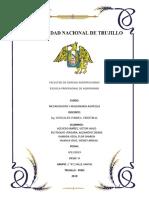 COSECHADORA AUTOPROPULSADA.docx