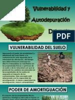 VULNERABILIDAD Y AUTODEPURACIÓN DEL SUELO.pptx