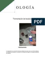 experimento de biologia (1).docx