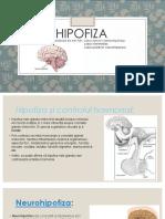 neurohipofiza.pptx