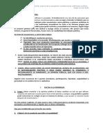 Correa Sutil.pdf