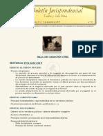 Boletín jurisprudencial n.º 12- 2019